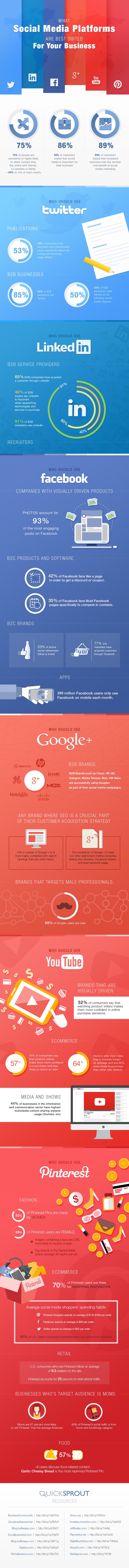 Infografik: Social Media Plattformen
